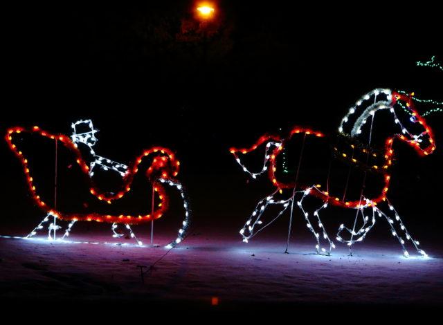 COL Reindeer Sleight